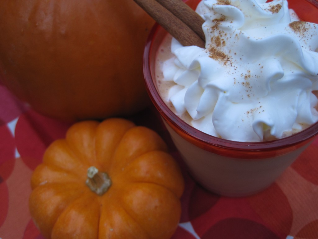 Pumpkin-smoothie, protein-packed, healthy, low-calorie, three-recipes