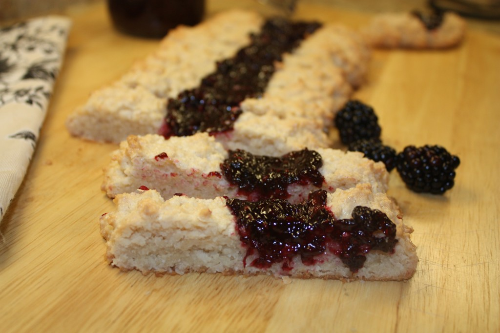 macadamia-coconut-blackberry-jam-cookie-slices