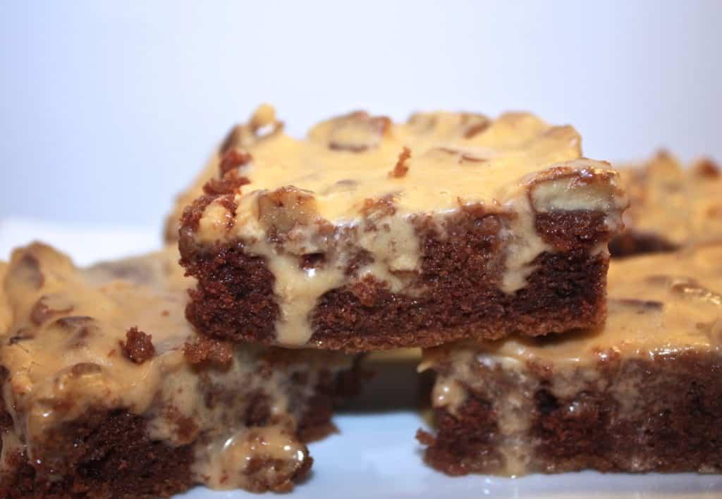 Texas-sheet-cake-with-dulce-de-leche-frosting-potluck-family-dessert