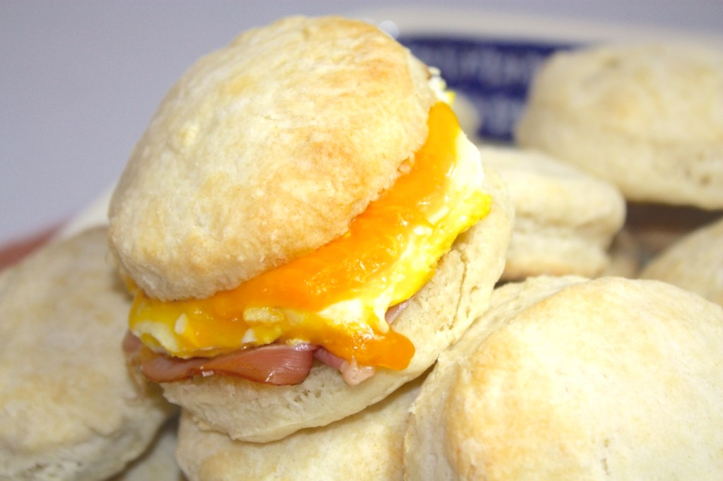 A close view of a biscuit filled with cheese and egg.