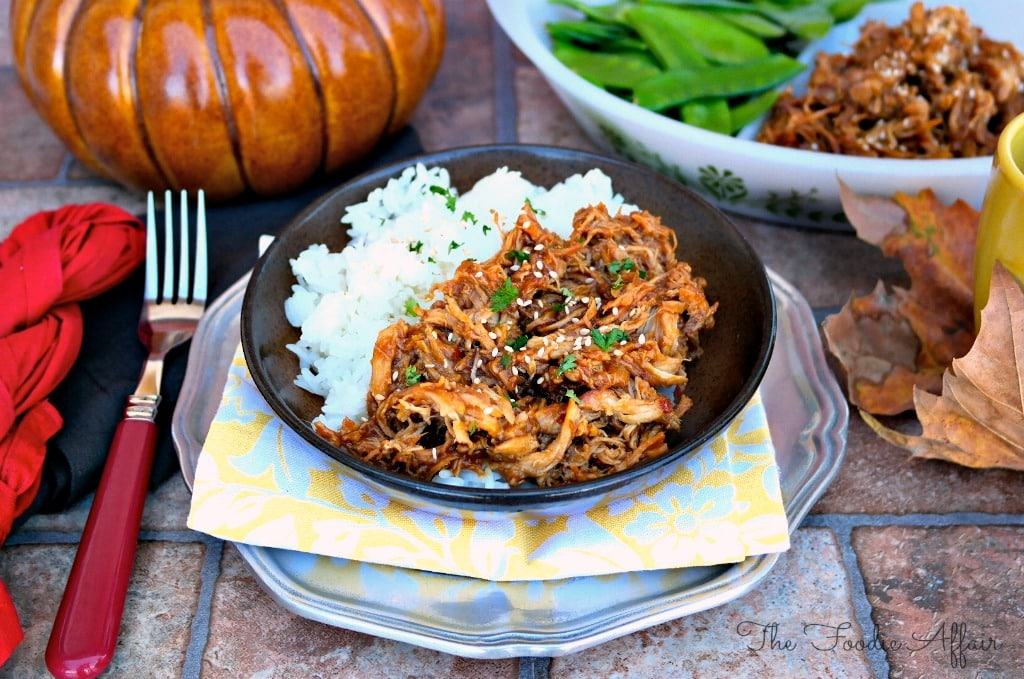 Honey Garlic Shredded Chicken - The Foodie Affair