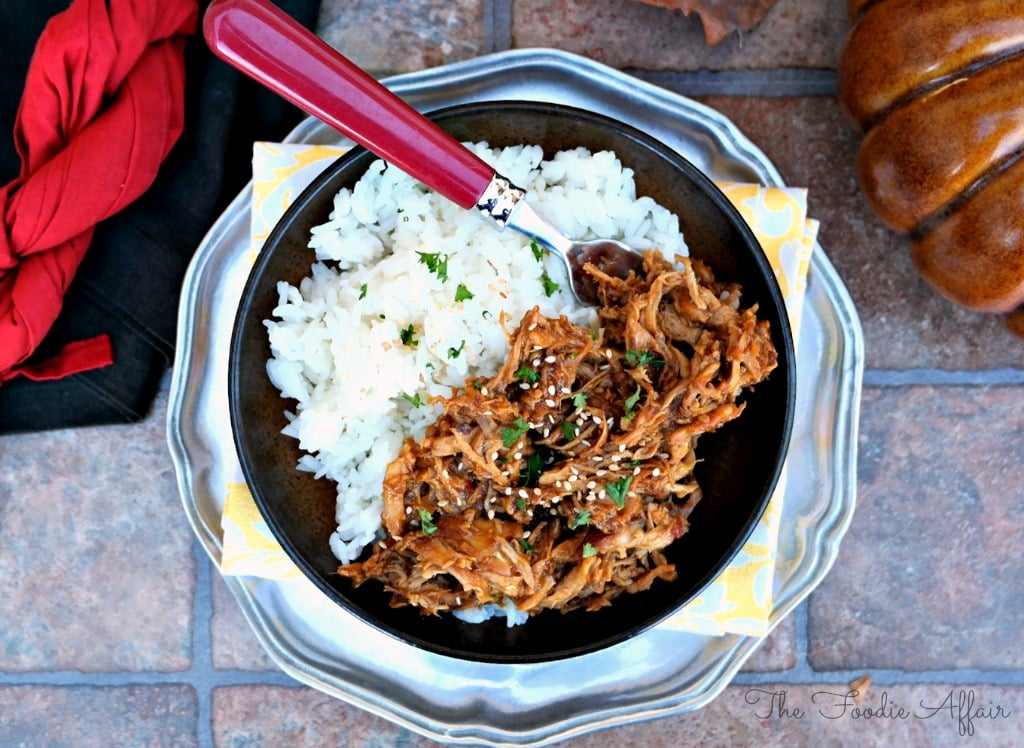Honey Garlic Shredded Chicken - The Foodie Affair