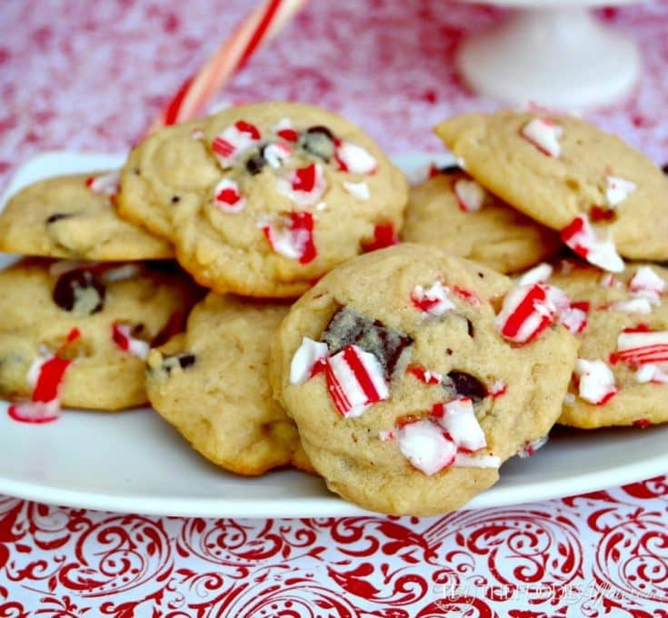 Chocolate Chip Peppermint Cookies - The Foodie Affair