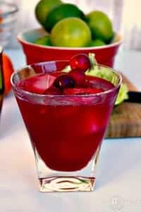 Cranberry Cosmopolitan Cocktail - The Foodie Affair