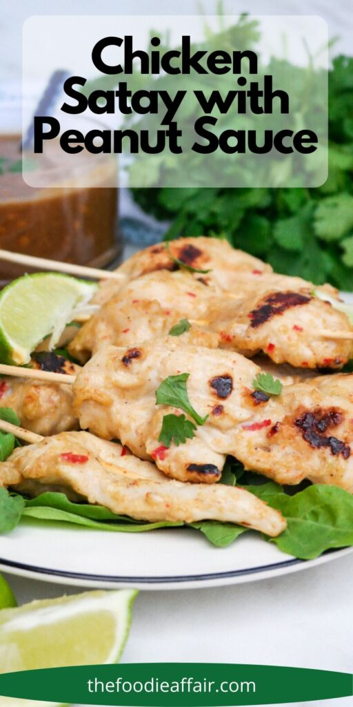 Thai chicken satay with peanut sauce is a simple delicious appetizer or enjoy as a main dish with a couple of side dishes for a hearty meal. #lowcarb #Recipe #Chicken #Satay