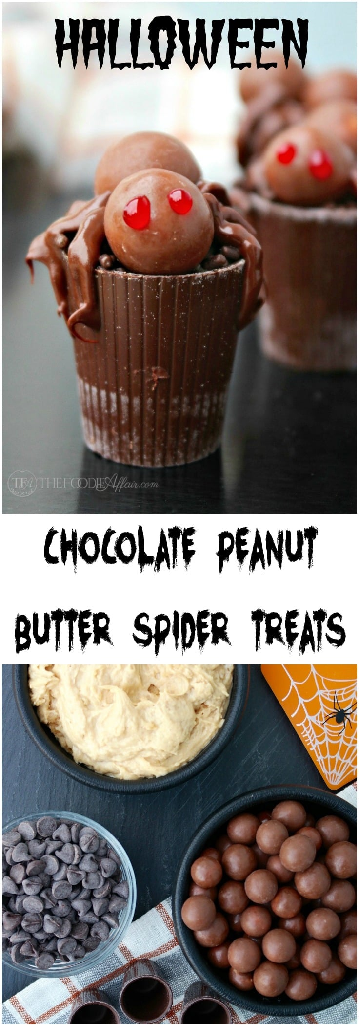 Chocolate Peanut Butter Spider Treats