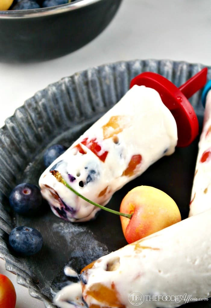 Creamy Protein Ice Cream recipe made with coconut milk, protein powder, greek yogurt, vanilla extract, and any add-ins like blueberries, cherries or chocolate and coconut flakes that you can think of!