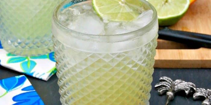 Low Sugar Margarita Recipe {Low Carb}