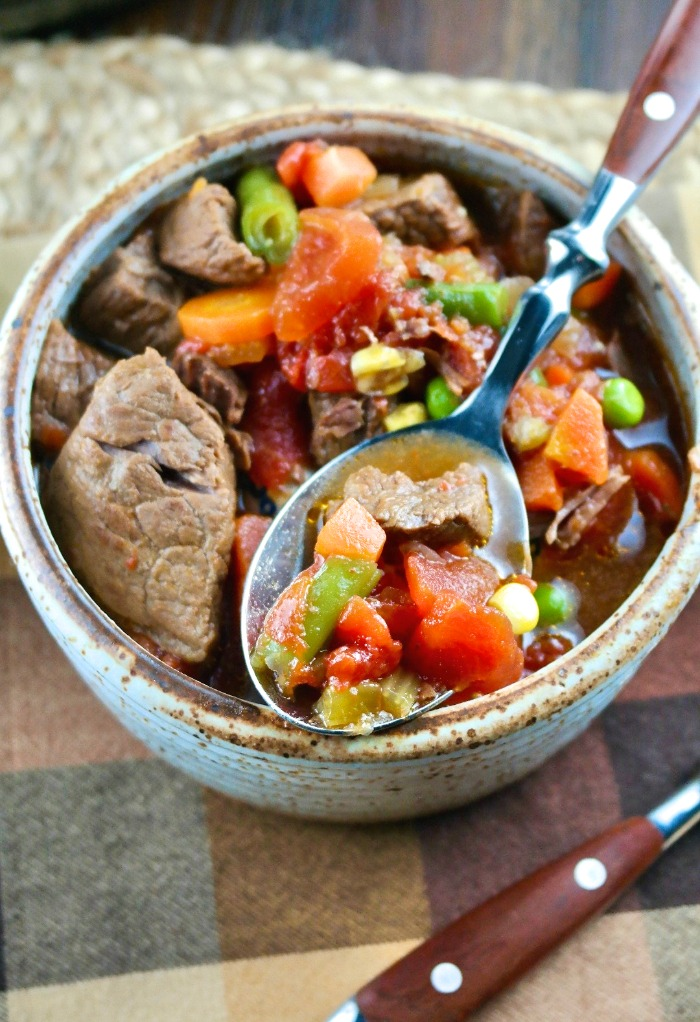 Spoonful of beef with vegetables made in an Instant Pot