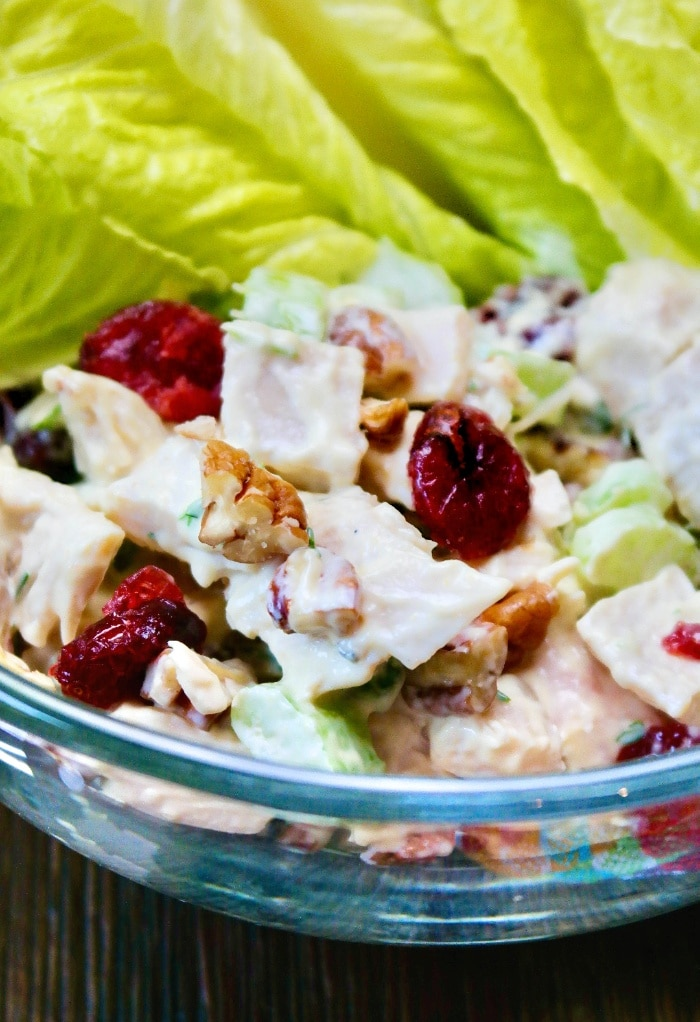 A close view of turkey salad with cranberries and chopped walnuts.