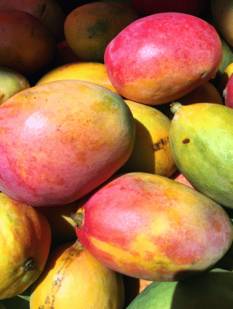 Close view of whole mangos.