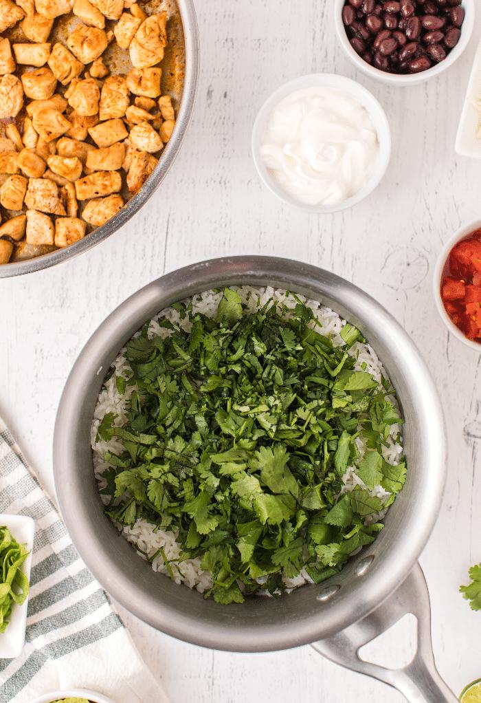 Fresh cilantro on top of white rice.