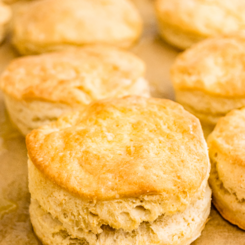 Fresh baked buttermilk biscuits on a baking sheet right out of the oven.